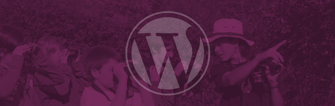What to look for in a WordPress support company
